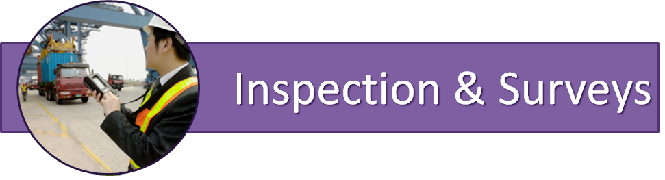 Mobile Inspection System - Data Capture Solutions